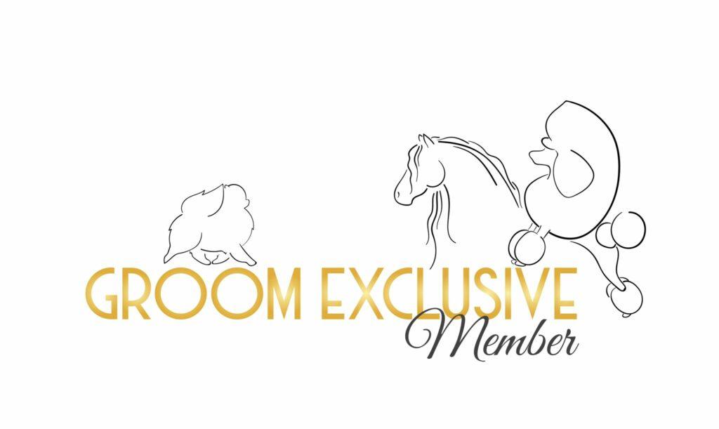 Groom Exclusive Member